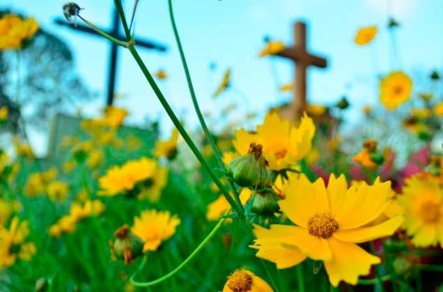 licenciamento cemiterio